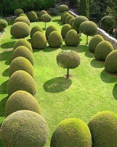 Garden party planning, summer party ideas, have a look at these. Lenotre garden in Gourdon - France Garden Hedges, Topiary Garden, Garden Trees, Garden Paths, Garden Art, Garden Landscaping, Garden Design, Formal Gardens, Outdoor Gardens