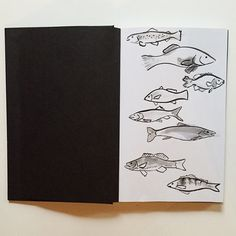 96/365 : daily sketchbook Fish, art print by Two if by Sea Studios