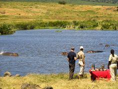Stay at andBeyond Ngorongoro Crater Lodge, the game lodge at the top of the world, on your next African safari in Tanzania. Safari Holidays, Game Lodge, Wildlife Safari, Photography Courses, African Safari, Top Of The World, East Africa, Wildlife Photography, Tanzania