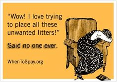 Absolute Truth!!  #spay #neuter
