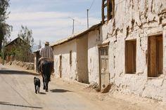 """""""Adobe y sal"""" es el título que Annaís Ferreira le dio a su foto tomada durante un viaje a Tulahuén, cerca de Ovalle, en el Norte Chico de Chile."""
