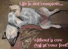 So true!!!!!!!!!!!