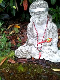 The Buddha sits peacefully in front of Silva's hedge with a few festive offerings from a passerby.