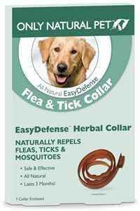 Herbal collar for fleas and ticks! We give Mack Trifexis for heart worms and fleas as well, but this helps with ticks!