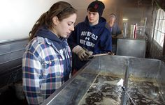 20 students dedicated their spring break to assisting with the maple sugaring process on campus.