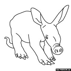 Charming Aardvark Coloring Pages | Baby Aardvark Coloring Page