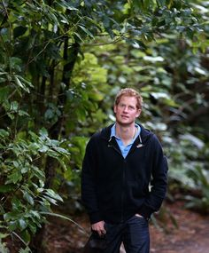 Prince Harry Photos - Prince Harry Visits New Zealand - Day 2 - Zimbio