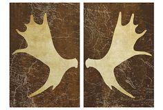 Moose Antlers Diptych on OneKingsLane.com