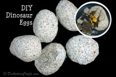 My oldest son was learning about dinosaurs in his class and it gave me motivation to do these Do-It-Yourself (DIY) Dinosaur Eggs (or rocks if you don't want to shape them into eggs.) We had all the ingredients, but I would suspect that some people may not have sand readily available to them. It only takes 1 cup of sand to make the five eggs you see in the photo mixed in with the other ingredients. The eggs are about 4 to 5-inches long and about 3-inches in diameter and we used a...