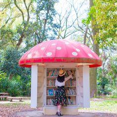 【きのこ文庫】 京都府立植物園の中にある きのこ文庫 可愛い絵本や、大人が読んでも楽しい 絵本がたくさん詰まっています。 写真の他にも、緑の森の中に いくつかきのこがあって、めっちゃ可愛い♥ 本の貸出はないそうなので 日差しの元での読書を楽しんだら きのこの中に返して、みなさんで大事に 使いましょう(❁´◡`❁) 植物園には、色鮮やかなお花もたくさん咲いていて とても楽しめますよー♬*゜ #京都 #京都旅行 #京都府立植物園 #きのこ文庫