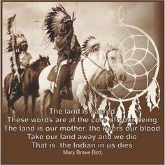""".""""The land is sacred. These words are at the core of your being. The land is our mother, the rivers our blood. Take our land away and we die. That is, the Indian in us dies."""" - Mary Brave Bird, Lakota  #native american #quote"""