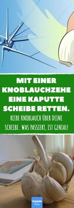 Mit einer Knoblauchzehe eine kaputte Scheibe retten. #lifehack #windschutzscheibe #riss #fenterscheibe #fenster #glas #hausmittel #notfall #auto #reparatur