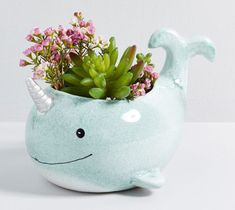 Arctic Helper Narwhal Planter - This narwhal planter is more than happy to host a potted plant, as e. Ceramic Planters, Ceramic Vase, Ceramic Pottery, Planter Pots, Slab Pottery, Succulent Planters, Pottery Vase, Flower Pot Design, Pinch Pots