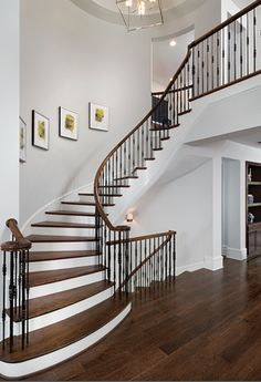 Atlanta Custom Home Arthur Rutenberg Homes, Stair Shelves, Staircase Remodel, Luxury House Plans, Entry Foyer, Entrance Hall, Finding A House, Model Homes, House Floor Plans