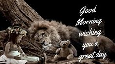 good-morning-wishing-you-a-nice-day Good Morning Beautiful Quotes, Cute Good Morning, Good Morning Wishes, Good Morning Quotes, Teddy Bear Images, Teddy Bear Pictures, Lion Pride, Lions, First Love