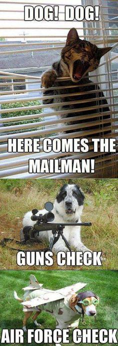 Hahahaha! Poor mailman!