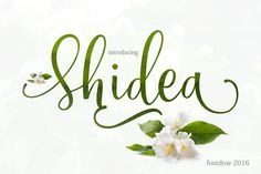 Shidea (pre sales) by fontdroe on @creativemarket