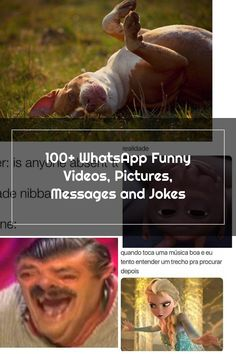 100+ WhatsApp Funny Videos, Pictures, Messages and Jokes Funny Videos, Funny School Pictures, Gif Pictures, School Humor, The 100, Jokes, Messages, Good Music, Husky Jokes
