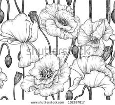 seamless pattern of black and white poppies by Azuzl, via ShutterStock