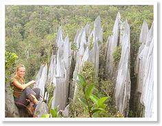 Gunung Mulu Nationalpark, Malaysia