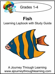 Fish Grades 1-4 Lapbook with Study Guide--8.00