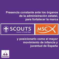 Marca Scout MSC