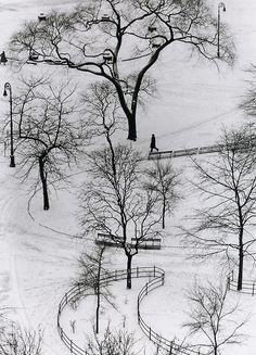 Washington Square by Andre Kertesz.