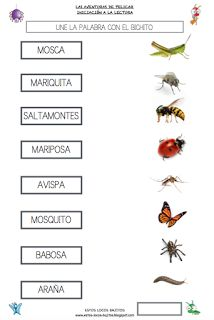 ESTOS LOCOS BAJITOS: FICHAS DEL PROYECTO LOS BICHOS Science, Multimedia, Animals, Homeschooling, Album, Baby, Butterflies, Vertebrates And Invertebrates, Wood Ants