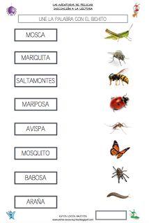 Spanish Language Learning, Sistema Solar, Early Childhood, Education, Animals, Multimedia, Homeschooling, Science, Album