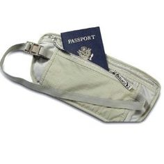 Travel safe money belt - for now. I'm still working on my best hidden pocket add-ons to clothing I already own, so I won't need one of these.