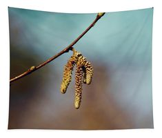 Spring mood Tapestry x by Helen Kelly. Our premium tapestries are available in three different sizes and feature incredible artwork on the top surface. Large Tapestries, Wall Tapestries, Tapestry, Basic Colors, Vibrant Colors, My Favourite Subject, Wall Spaces, How To Be Outgoing, Color Show