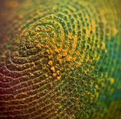Painted Finger Tip