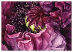Коллекция картинок: Иллюстрации Botanical от Eunike Nugroho