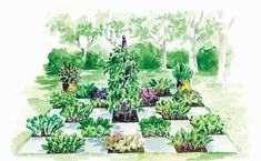 Garden & Landscape Design, Ideas and Tips   Garden Design
