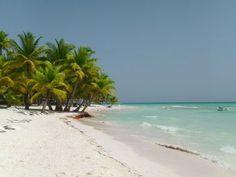 Catamaran Cruise to Saona Island from Punta Cana - Punta Cana | Viator