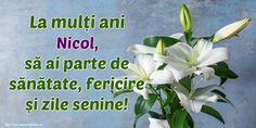 Felicitari personalizate de zi de nastere - La mulți ani Nicol, să ai parte de sănătate, fericire și zile senine! Herbs, Plants, 8 Martie, Mai, Persona, Tiny House, Barbie, Facebook, Birthday
