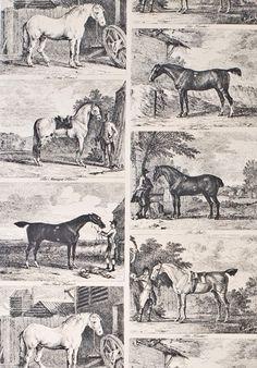 Gilpin Horses classic wallpaper in Black colourway. Equestrian Bedroom, Equestrian Decor, Equestrian Style, Horse Wallpaper, Print Wallpaper, Fabric Wallpaper, Bathroom Wallpaper, Classic Wallpaper, Work Horses