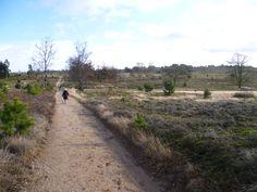 2013-02-03 Lekker wandelen op de Sprengenberg, nabij Palthe