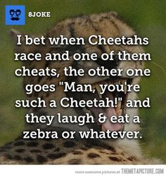 """I don't know why but I find that the """"eat   a zebra or whatever"""" part is the funniest part x)"""