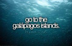 Before I Die Bucket Lists | before i die, blog, blue, bucket list, galapagos - inspiring picture ...