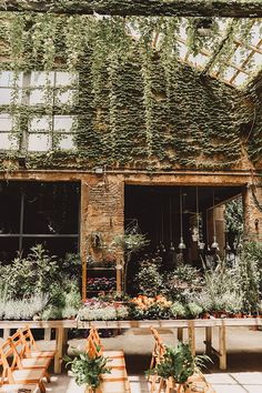 La slow wedding de Carol y Félix en un invernadero en Barcelona.