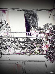 Flowerpots by asorairam on 500px
