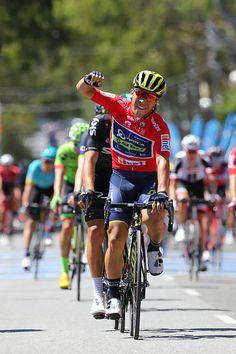 19th Santos Tour Down Under 2017/ Stage 4 Men Arrival / Sprint / Caleb EWAN Red Sprint Jersey / Celebration / Norwood Campbelltown / Bupa Stage / Men...