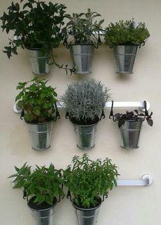 Hangin garden
