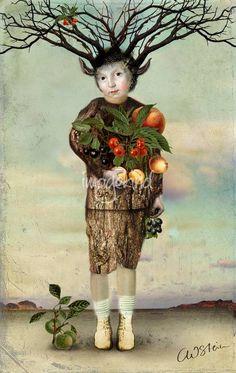 Catrin Welz-Stein-Harvest life