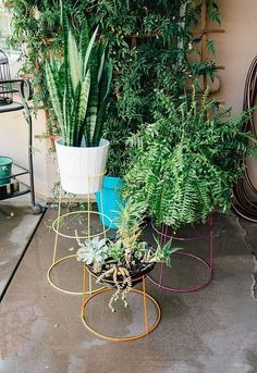 Simple Plant Stand DIY that saves you money! Need plant stands but don't have a lot of money to spend? Learn how to easily upcycle inexpensive tomato cages into DIY modern plant stands that look great both inside and outside your home! Modern Planters, Diy Planters, Planter Boxes, Hanging Planters, Planter Ideas, Basket Planters, Succulent Planters, Flower Planters, Garden Planters