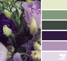 Floral tones soft, dramatic, yet comfy Hue Color, Colour Pallette, Colour Schemes, Color Patterns, Color Combos, Colours, Flora, Beautiful Color Combinations, Color Balance