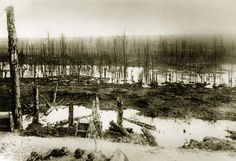 WWI, Nov 1916; The desolation of the Ancre battlefield, where the Royal Naval Division fought. -Navy News - Reporting from the Fleet