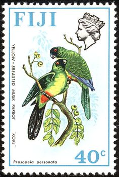 Masked Shining Parrot stamps - mainly images - gallery format