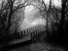 black and white picture - bridge